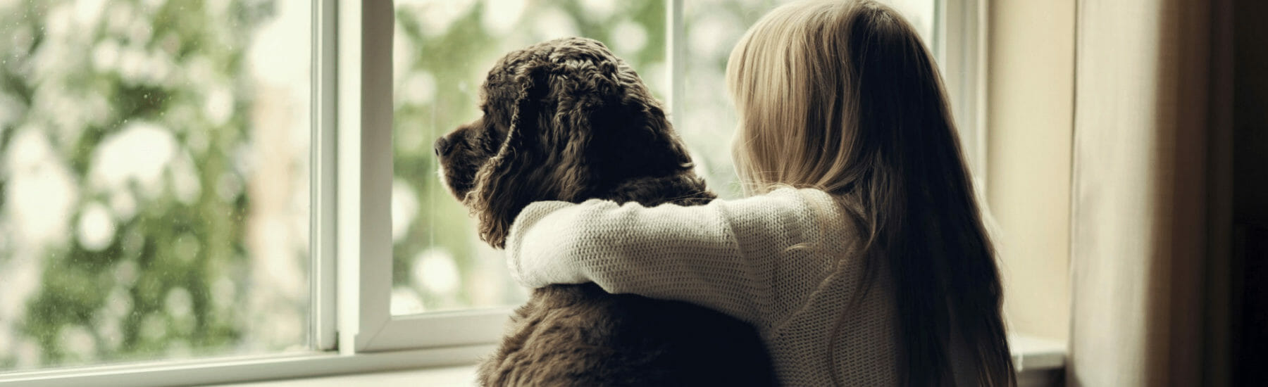 Back view of a girl with her arm around a dog