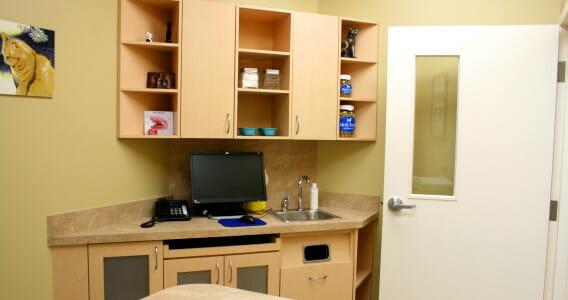 Examination room counter at westbridge veterinary hospital