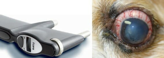 An ophthalmoscope and bloodshot eye of a dog