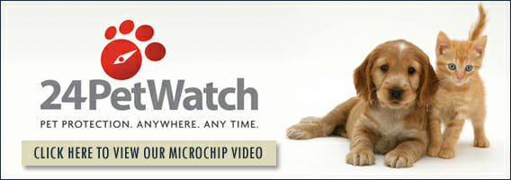 Click here to view our microchip video banner