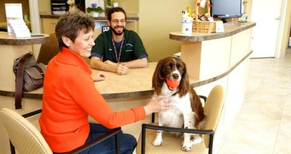 A veterinary staff member sitting at the front desk with a dog owner and her dog sitting on chairs