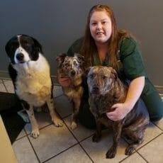 Samantha with three dogs