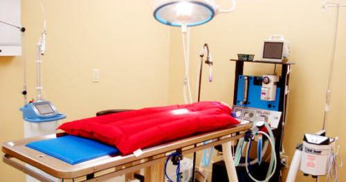 Westbridge - Surgery